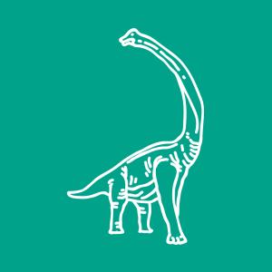 Mega leuke dinosaurussen boek